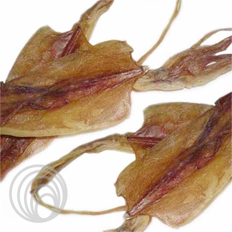 魷魚(干貨)