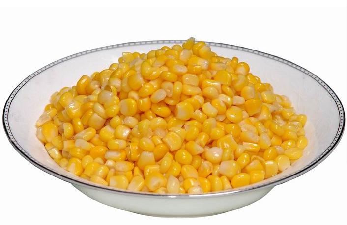 玉米茎细胞手绘图