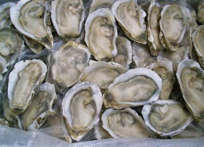 冻货海鲜品种名字图片