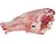 黑豬豬頭骨